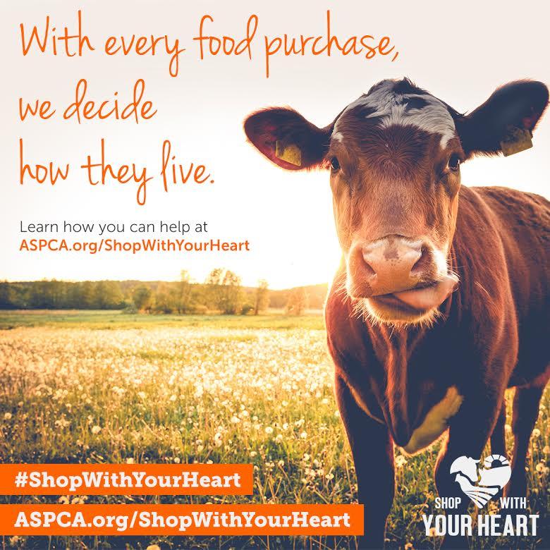 Make Heart Hands for Farm Animals #ShopWithYourHeart