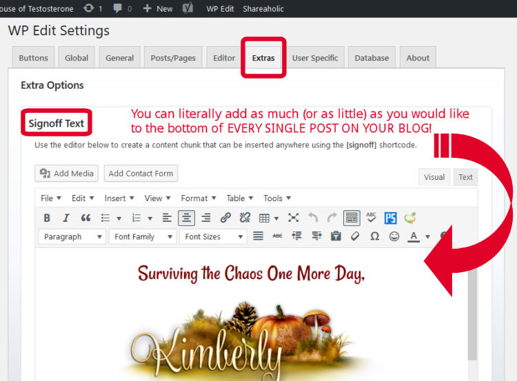 WP Edit allows you to customize your blog posts once and done!