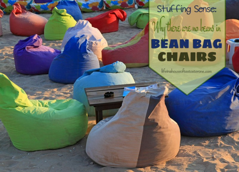 Stuffing Sense: Why There Are No Beans in Bean Bag Chairs