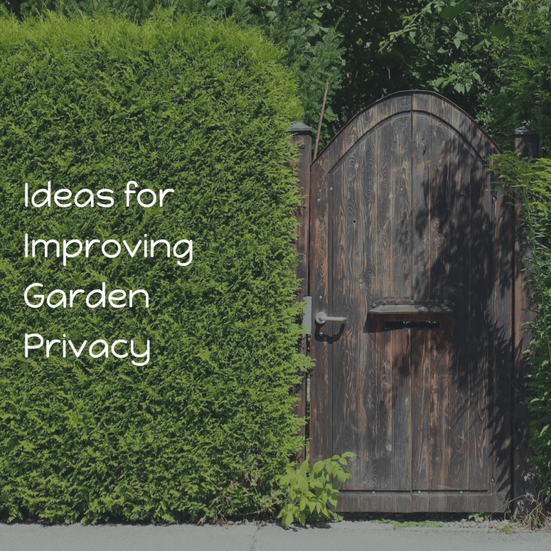 Ideas for Improving Garden Privacy