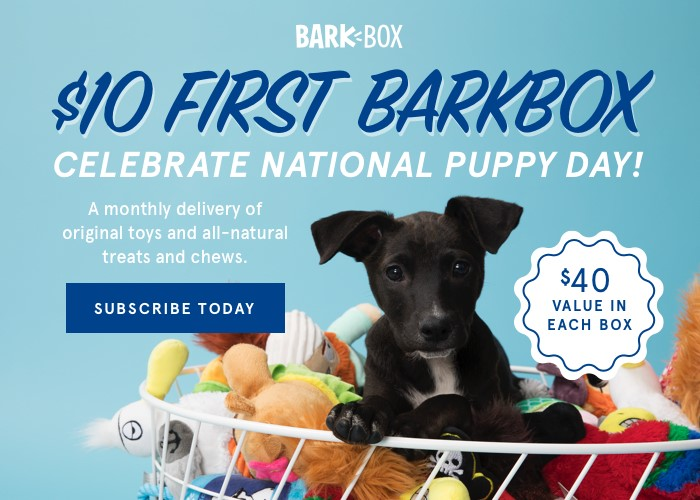 Celebrate National Puppy Day with BarkBox