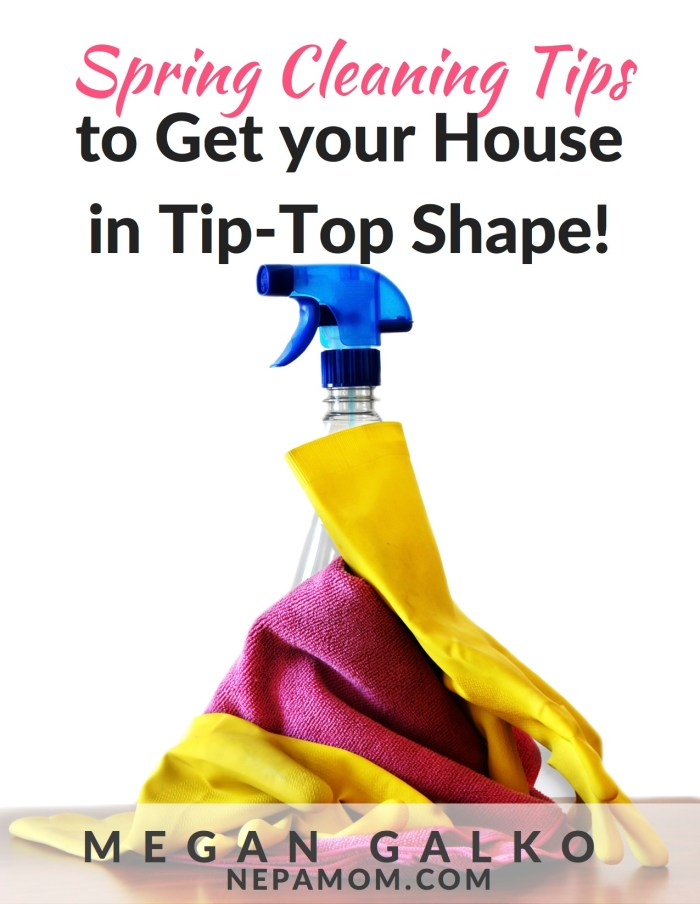 Week 169 Spring Cleaning Tips and Ebook by NEPA Mom #springclean #home #ebook #free