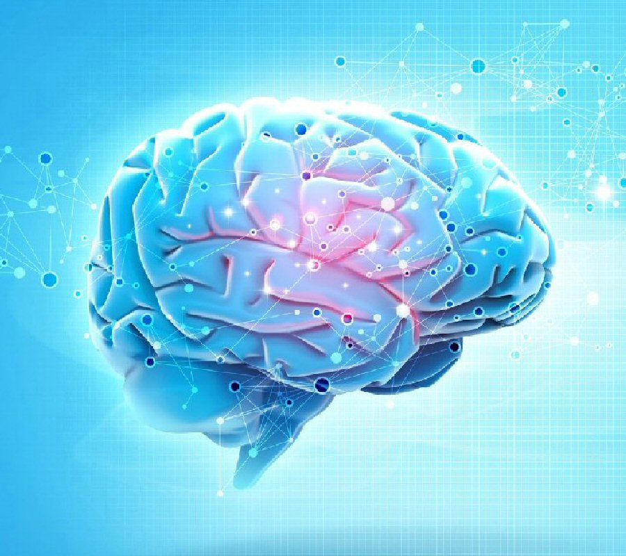 Two Common Brain Disorders and What They Do To Your Brain