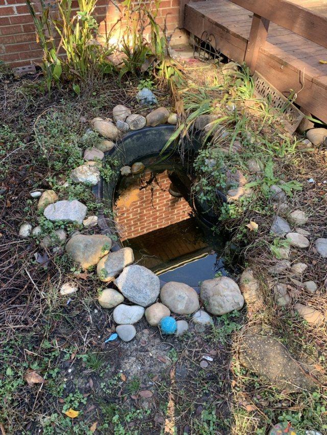 Koi Pond in Deck Garden