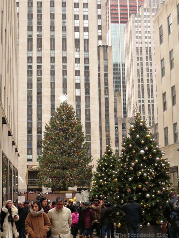 Week 208 - Rockefeller Christmas Tree from Boondocks Blog