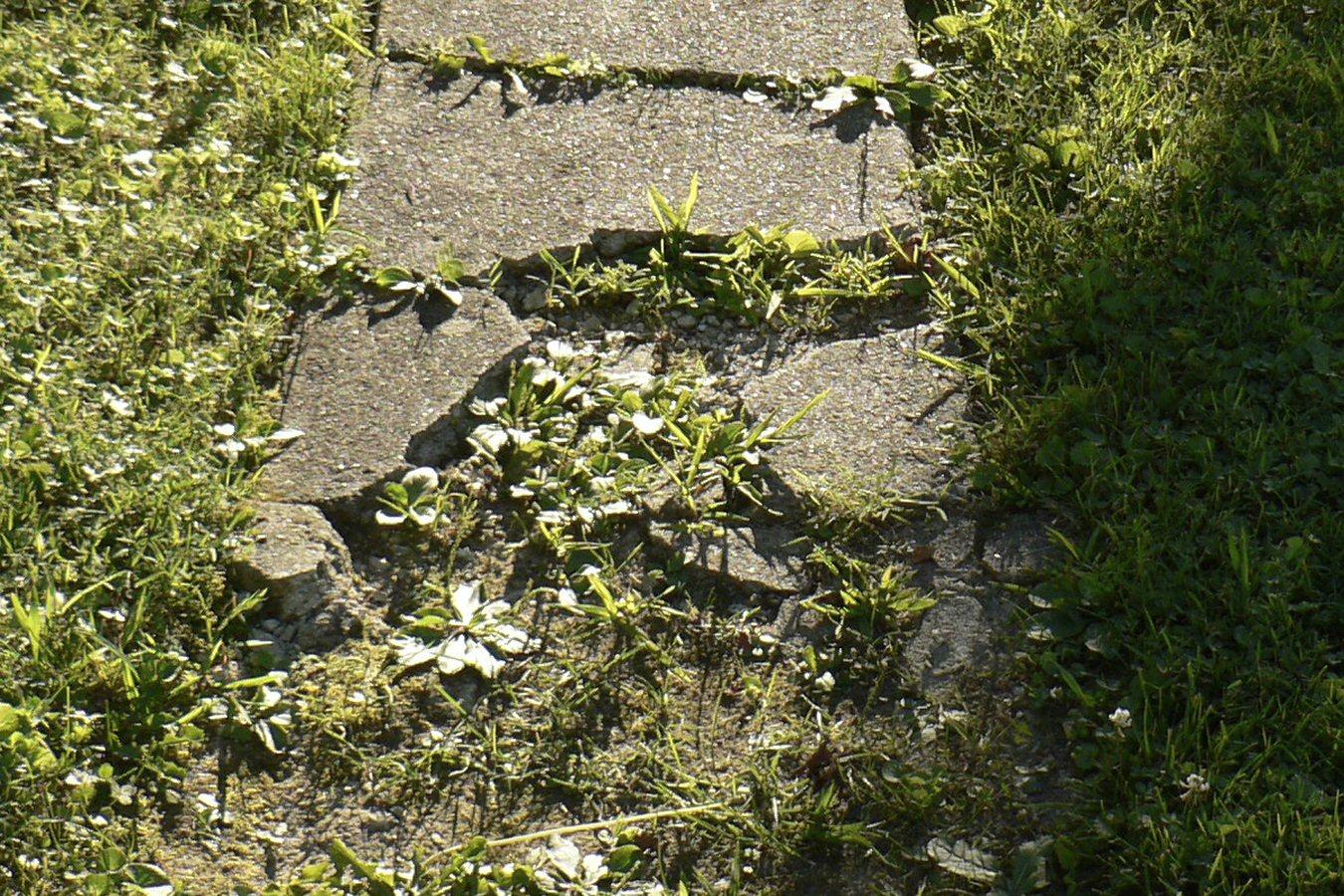Repair broken sidewalks