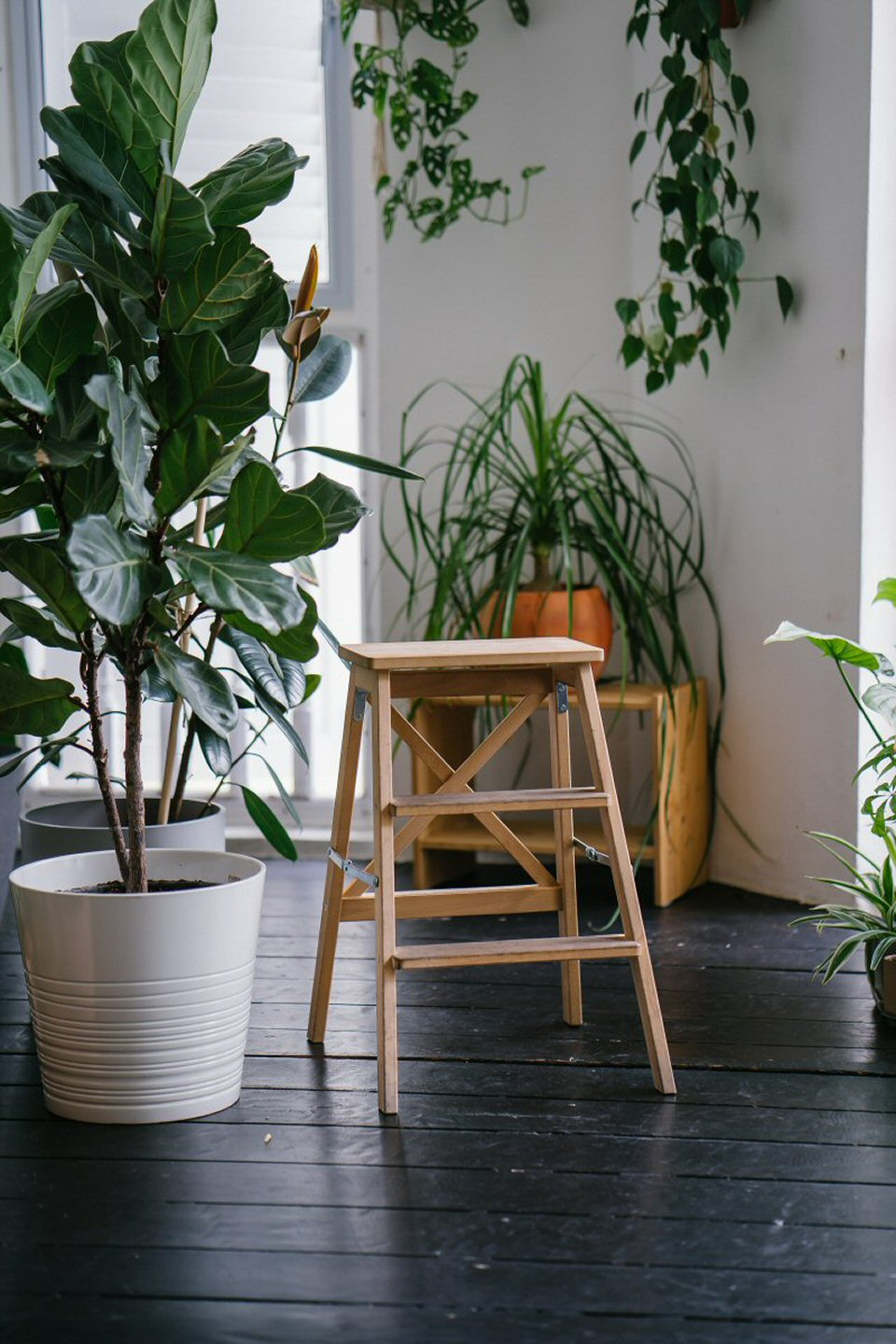 Bring Nature Indoors with Real or Artificial Houseplants