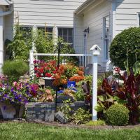 flowers, garden, backyard, birdhouse