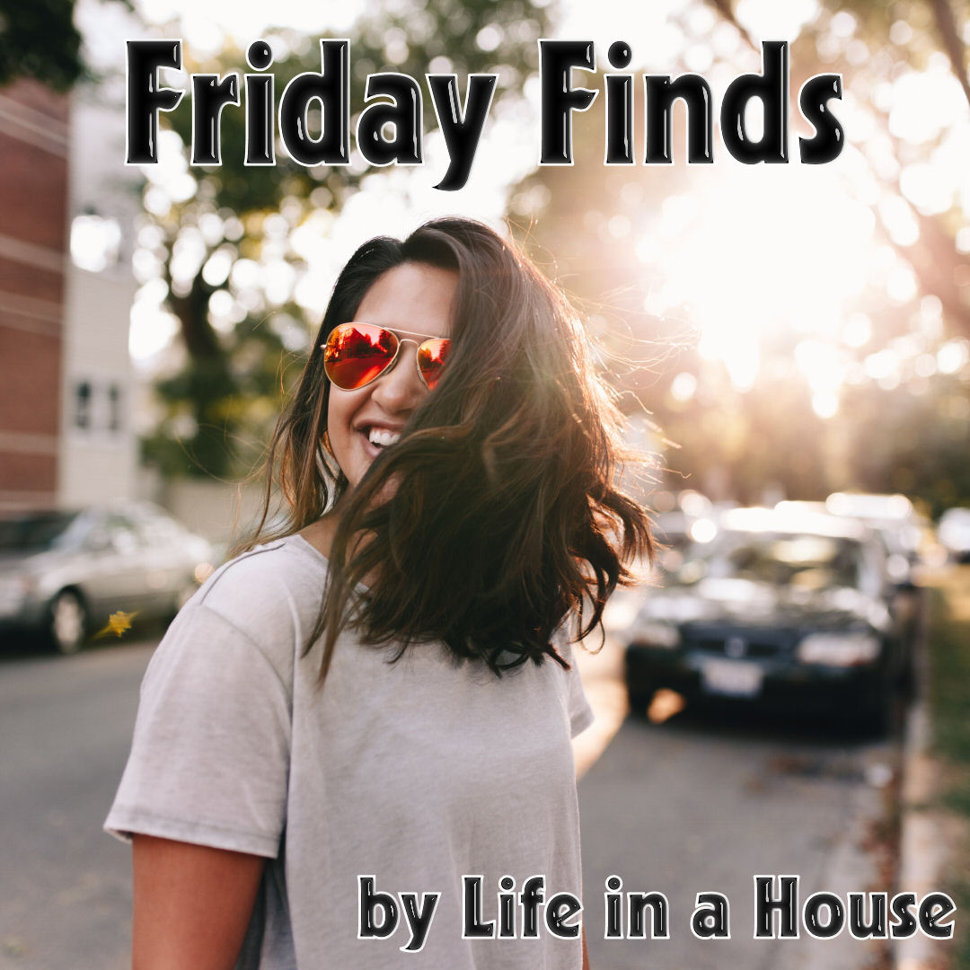 Friday Finds by Life in a House