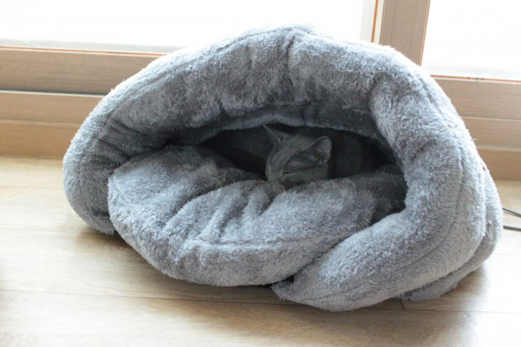 what makes a good cat bed