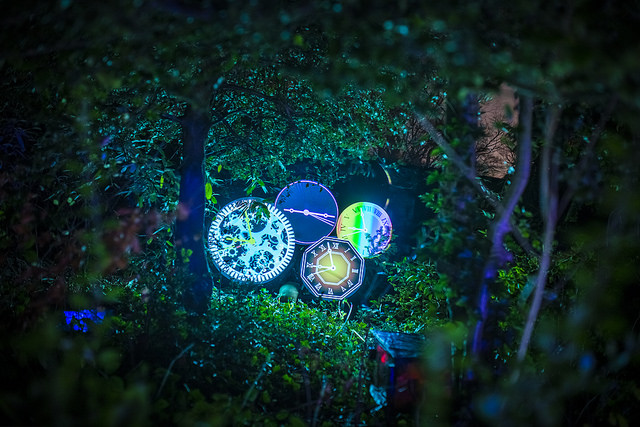 enchanted parks forest event 2017
