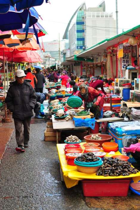 Jagalchi Fish Market: Top 15 Things to Do and Eat in Busan, South Korea >> Life In Limbo