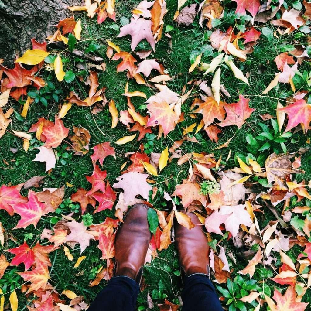 Inspiration: October 12 >> Life In Limbo