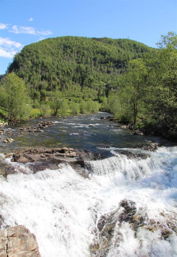 Hardangerfjord19