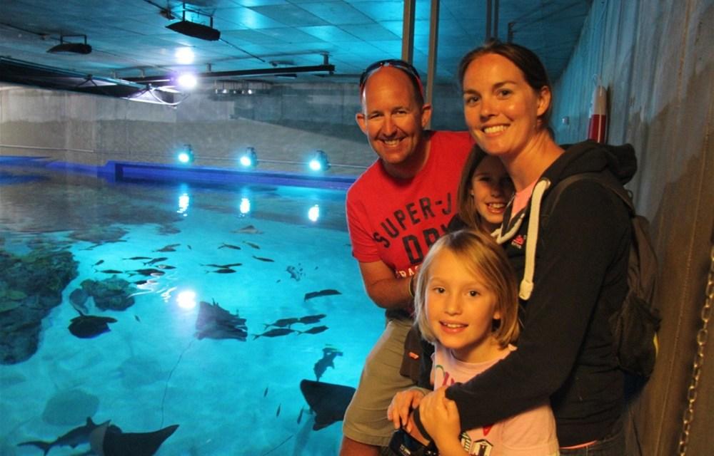 DenBlaaPlanet – Amazing Aquarium