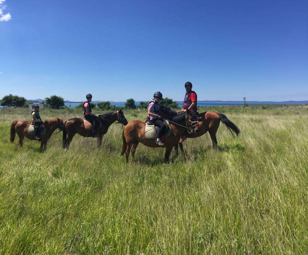 Leg 11 Croatia Zaton Horse Riding - 1 (27)-min