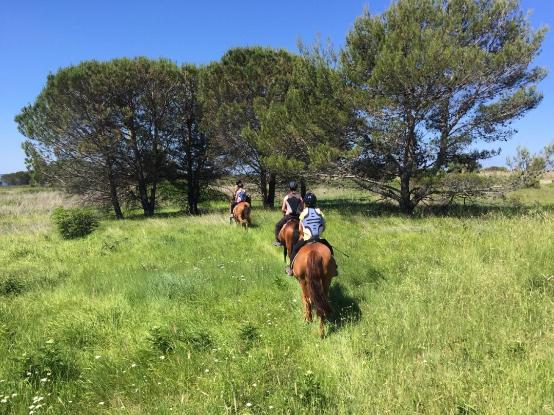 Leg 11 Croatia Zaton Horse Riding - 1 (45)-min