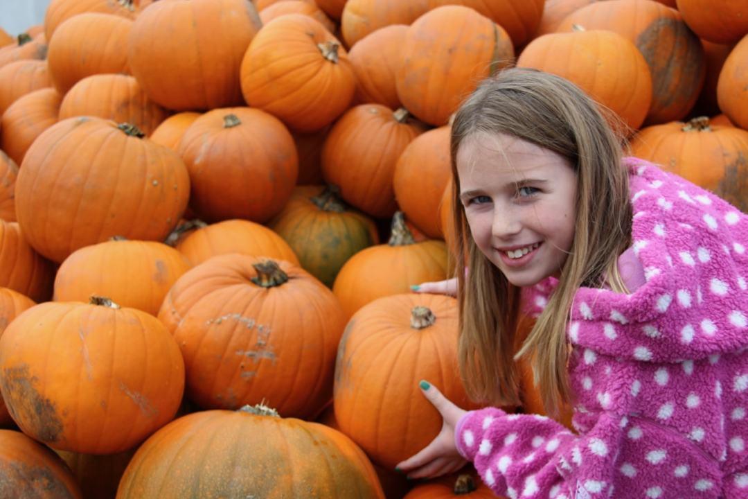 Pumpkins - 1 (3)-min