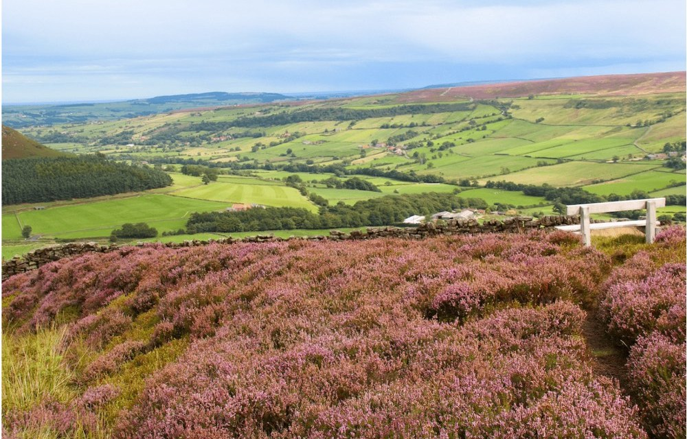 North York Moors | 5 Ideas for a Fun Filled Family Weekend in North Yorkshire