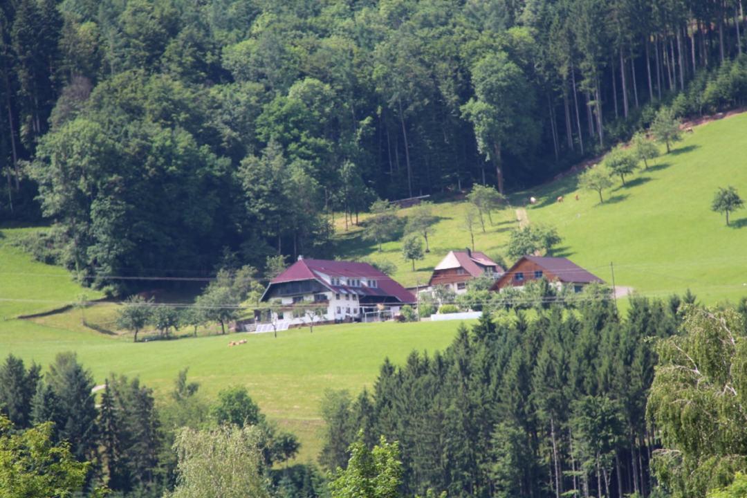 Black Forest - 1 (18)-min