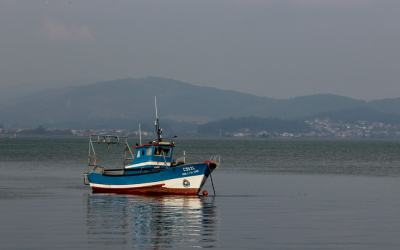 Quiz: How Much Do You Know about Caminha in Northern Portugal?