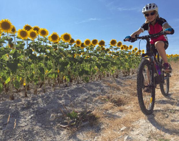 Bike Rides & Vineyards around the Cognac region