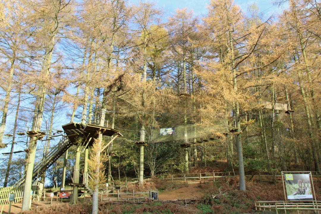 Dalby Forest - 1 (2)-min