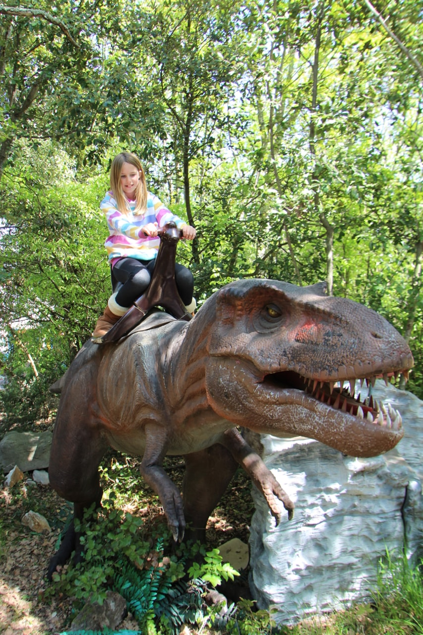 Dinosaur Park - 1 (16)-min