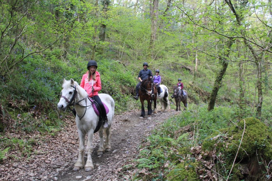 Horse Riding - 11-min