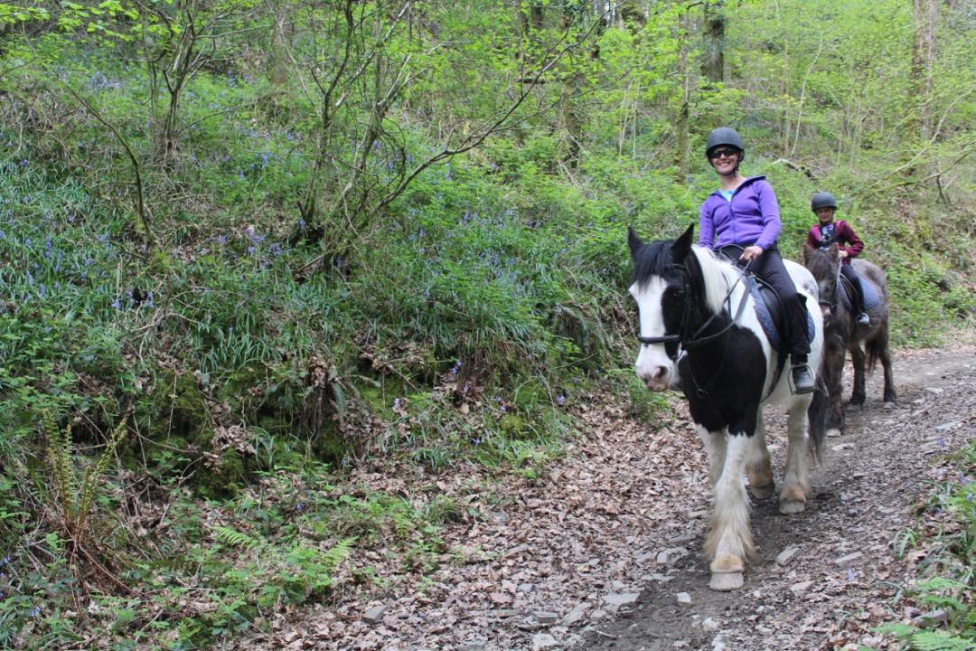 Horse Riding - 13-min