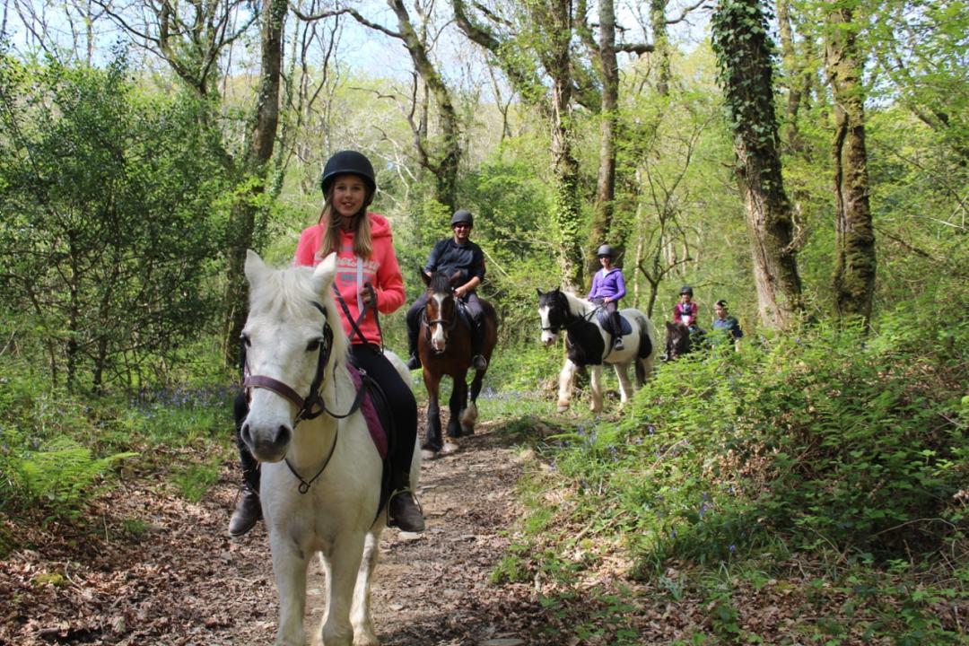Horse Riding - 15-min