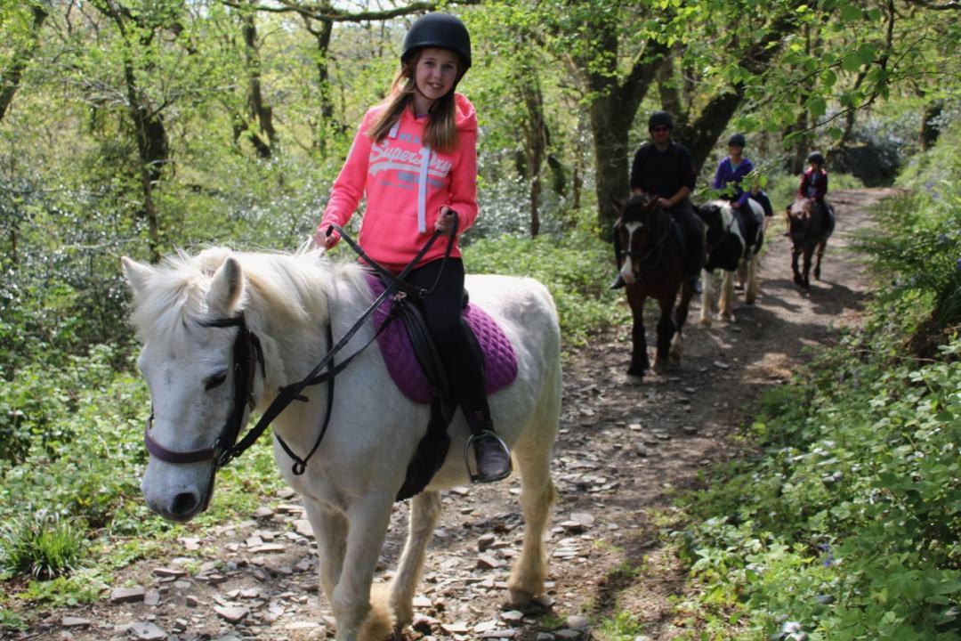 Horse Riding - 16-min