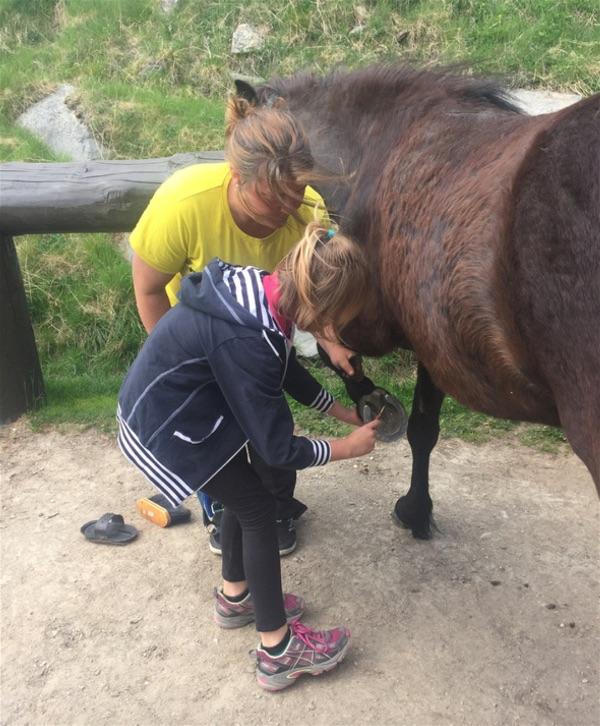 Kvistli Ranch Horse Riding 18