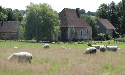 Exchanging historic cathedrals for the chateaus of the Loire Valley