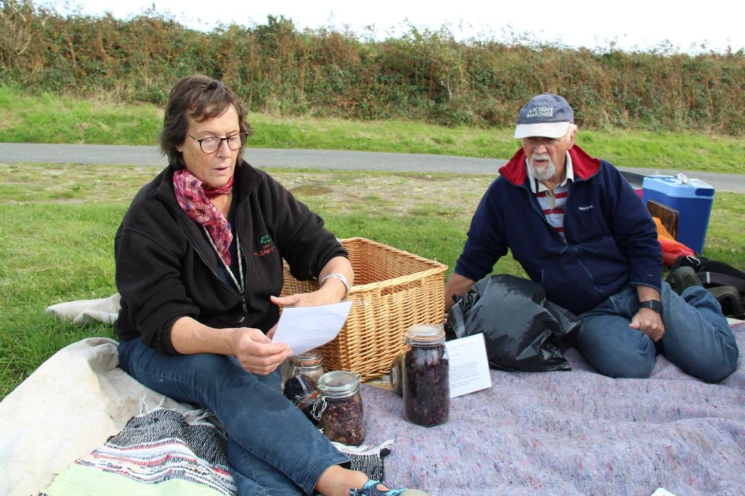 Pembrokeshire Day 1 - Foraging - 1 (26)-min