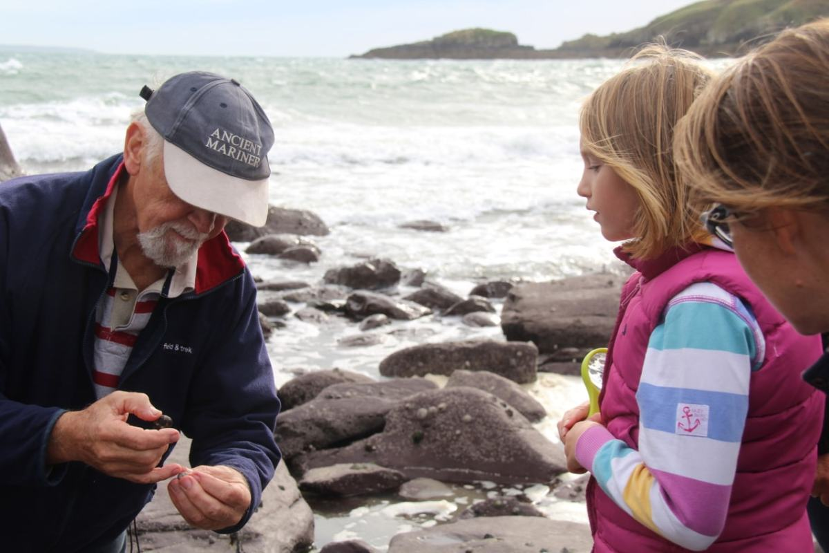 5 Reasons to try Seashore Foraging & Wild Cooking in Pembrokeshire