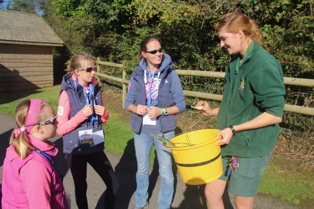 Pembrokeshire Day 2 - Folly Farm - 1 (27)-min