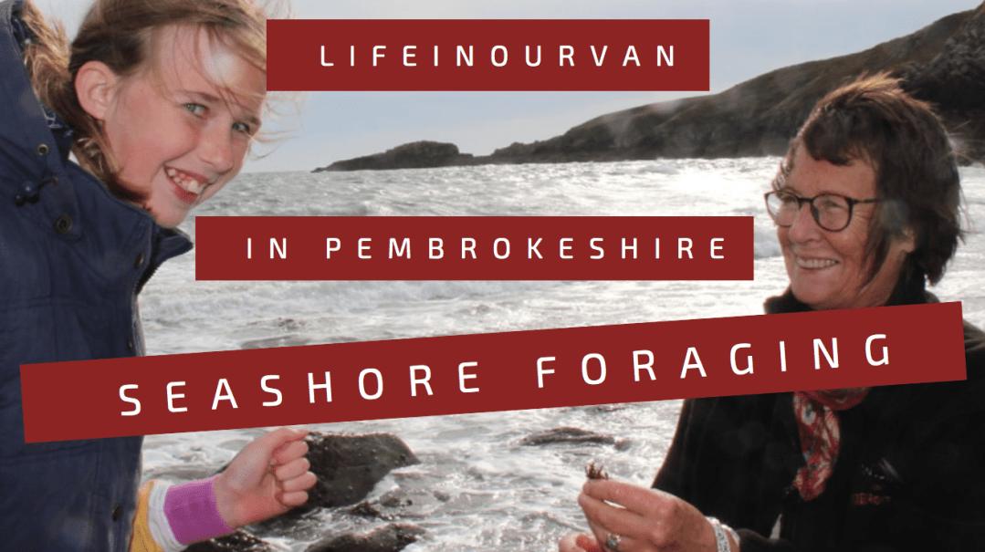 Pembrokeshire7
