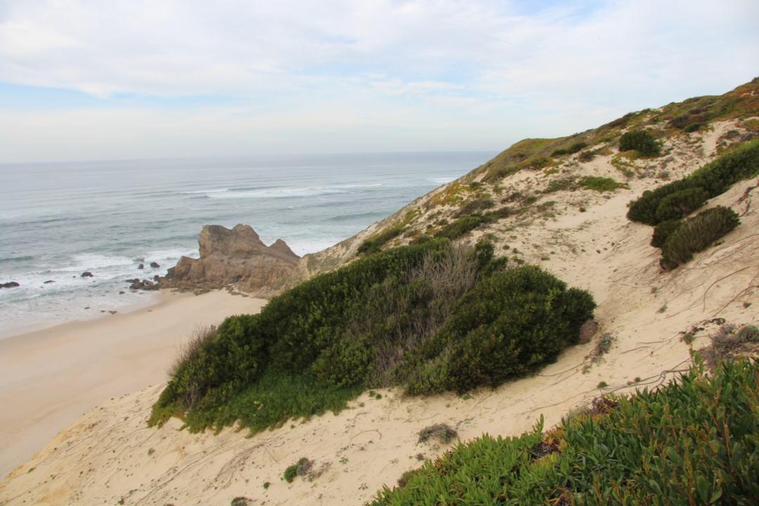 atlantic ocean drive portugal - 1 (16)-min