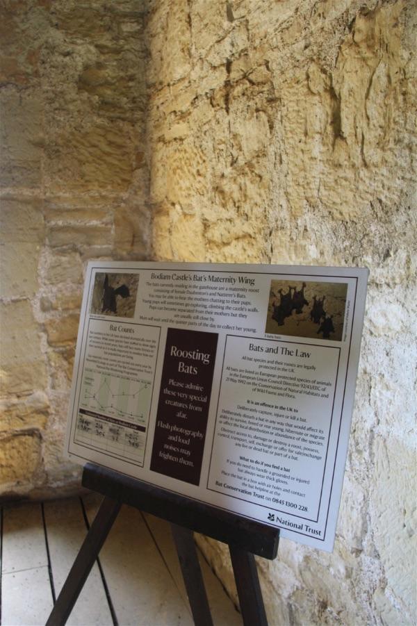 Bodiam Castle - 1 (23)-opt