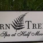 Fern Tree A Spa at Half Moon