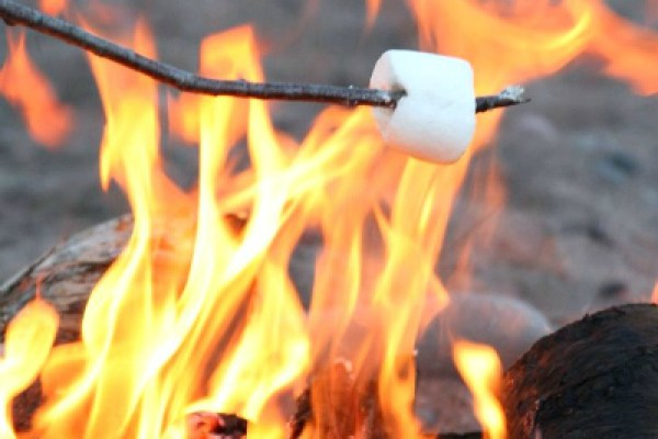 can't afford summer camp, roasting marshmallows