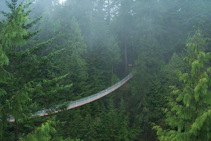 Capilano Suspension bridge, Vancouver, 48 hours in Vancouver, British Columbia, Canada, travel, Hello BC, explore BC