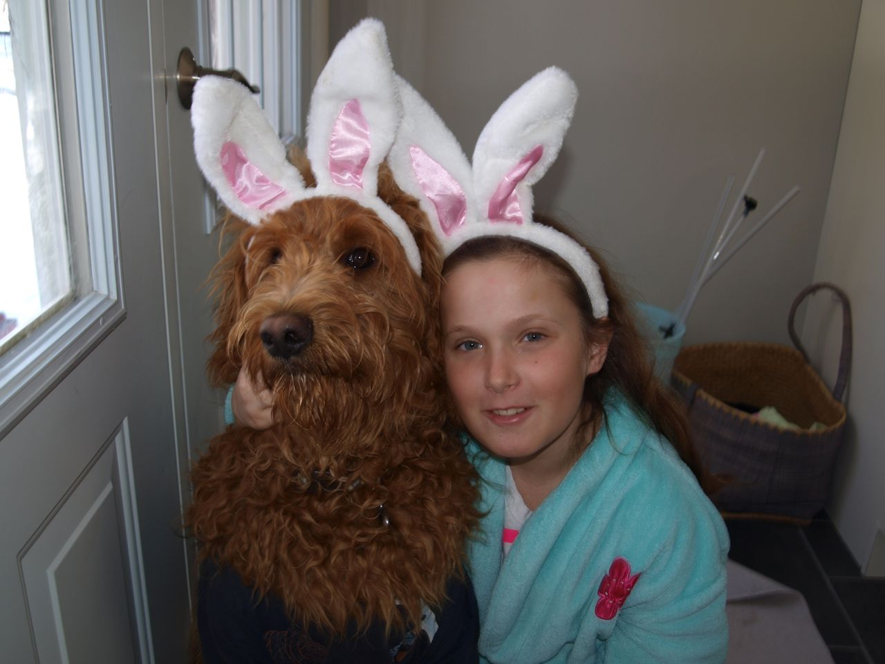 easter fun for teens and tweens, dog in rabbit ears