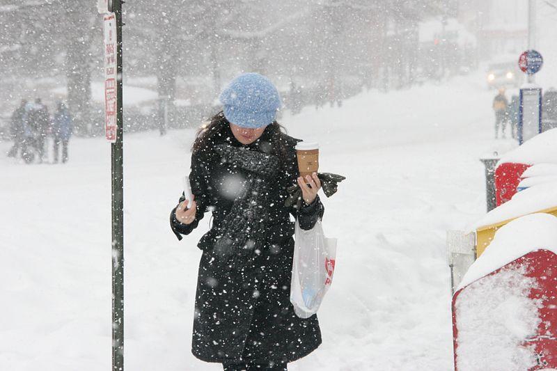 800px-DC_Snowstorm_Feb_-_Flickr_-_Al_Jazeera_English_(9)