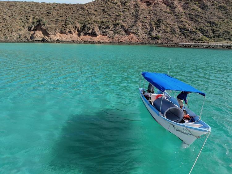 Best Adventure Tours in Cabo, Isla Espíritu Santo, Biosphere