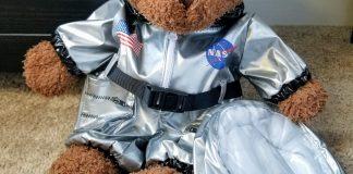 teddy bear in an astronaut suit