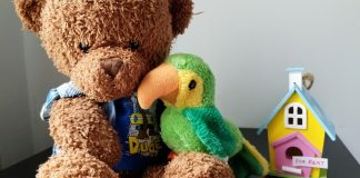 teddy bear and bird