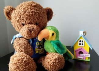 teddy bear and bird