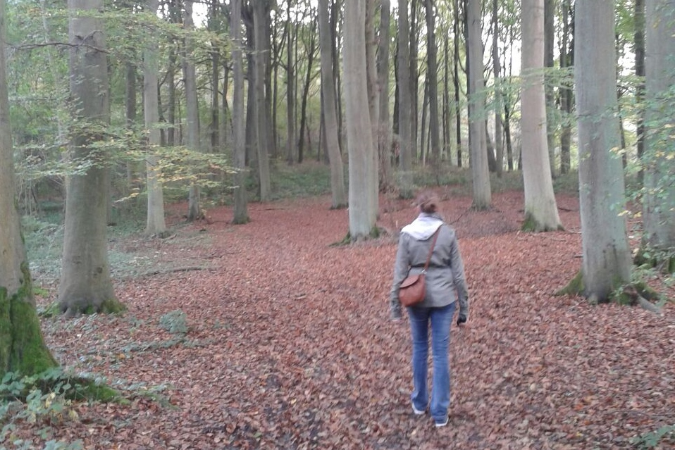 favoriete geocaches Boswandeling 9